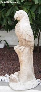 Pappagallo ornamentale